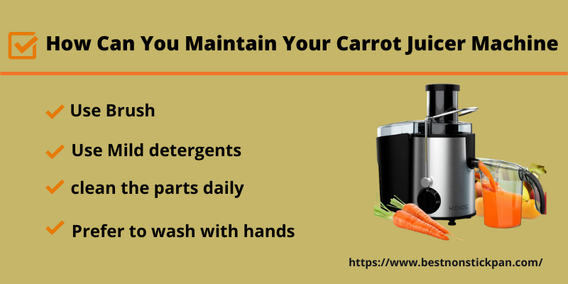 How Can You Maintain Your Carrot Juicer Machine